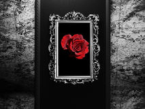 Old frame on the dark wall Royalty Free Stock Photo