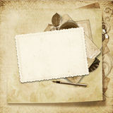 Old frame on victorian background Stock Photos