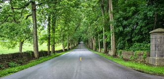 Old Frankfort Pike Royalty Free Stock Image