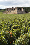 Old french vineyard chateau Burgundy, France, grapes growing, vertical Royalty Free Stock Images