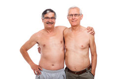 Old friends royalty free stock photography