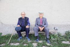 Old friends. Two old friends sitting on bench at wall outdoors with chicken aside Royalty Free Stock Photos