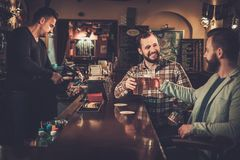 Old friends drinking draft beer at bar counter in pub. Royalty Free Stock Photography