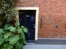 Old frontdoor. Old blue front door in old stone wall with green plants in the netherlands Royalty Free Stock Photos