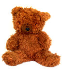 Old furry brown teddy bear on white background Royalty Free Stock Image
