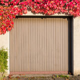Old garage with red ivy Stock Images