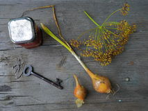 Old Garden. Fresh Onion and Dill Flower with Old Key and Metal Box Royalty Free Stock Photography