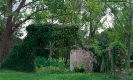 Old garden gate. Old stone wall with garden gate covered with vegetation Stock Photography