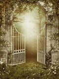 Old garden gate with ivy. And roses Stock Photography