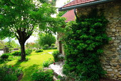 Old garden and house. Superb green garden and stone-built house in the the french countryside (chartreuse Stock Photo