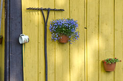 Old garden rake and flowerpots with flowers on wall Stock Photos
