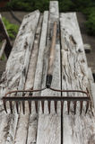 Old Garden Rake On Woodpile Stock Image