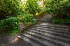 Old Garden with Stone Walls and Stair Steps Stock Photography