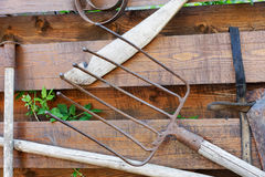 Old garden tools on a  fence Royalty Free Stock Photography