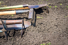 Old garden tools. Old retro garden tools (cultivator, shovel, rake) over brown soil (ploughed land) close up. Copy space. Agriculture, gardening, soil Royalty Free Stock Photo