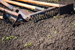 Old garden tools. Old retro garden tools (cultivator, shovel, rake) over brown soil (ploughed land) close up. Copy space. Agriculture, gardening, soil Royalty Free Stock Images