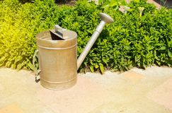Old garden watering can is next to a beautiful green flower beds in the summer garden. Flowerbed vegetable care spring gardening leisure nature equipment royalty free stock photo