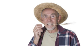 Old gardener with straw in mouth Royalty Free Stock Photo