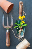 Old gardening tools Royalty Free Stock Image