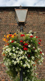 Old Gas lamp post with flowers Royalty Free Stock Images