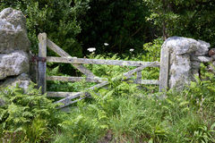 Old gate Royalty Free Stock Images