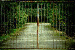Old gate Royalty Free Stock Image