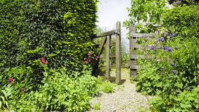 Old gate ajar in a summer country garden Stock Image