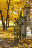 Old gate in autumn forest Stock Photography