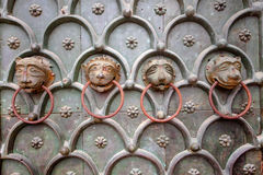 Old gate with lions heads Royalty Free Stock Images