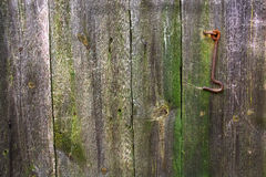 The old gate. Old mossy gate with a rusty hook.Background Stock Images