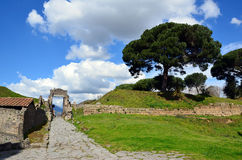 Old gate in the pompei city excavation italy Stock Photography