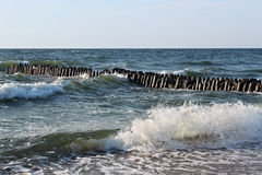 Old german breakwater on the Baltic Sea coast at summer. Stock Photo
