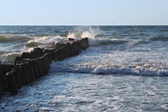 Old german breakwater on the Baltic Sea coast at summer. Stock Photography