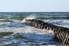 Old german breakwater on the Baltic Sea coast at summer. Royalty Free Stock Photo