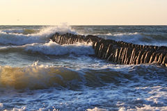 Old german breakwater on the Baltic Sea coast at summer. Stock Images