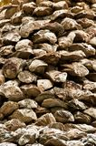 Old giant oyster wall Royalty Free Stock Photos