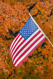 Old Glory and Glorious Autumn Color Royalty Free Stock Photo