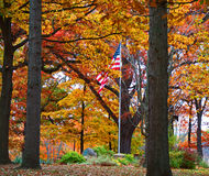Old Glory in the Park. A United States flag in the midst of colorful fall leaves in a park setting Stock Images