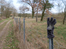 Old glove lost at the roadside displayed on a pole. On a rural dirt track through farm pastures for the attention of the owner Royalty Free Stock Images