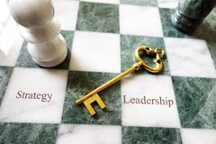 Business key chess Stock Image