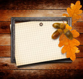The old gold wooden frame on grange wall with oak leaves Royalty Free Stock Image