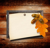 The old gold wooden frame on grange wall with oak leaves Royalty Free Stock Photos