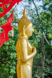 Old golden standing buddha in public in Thai Temple. Buddha of Friday Royalty Free Stock Image