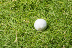 Old golf ball on green grass Royalty Free Stock Photos