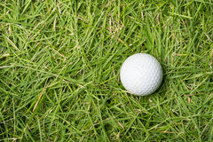 Old golf ball on green grass Royalty Free Stock Photography