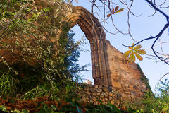 Old gothic arch Royalty Free Stock Photos