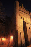 Old Gothic building. Illuminated by night lights Royalty Free Stock Image