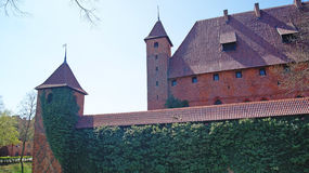 Old gothic castle in Malbork, Poland. Stock Images