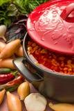 Сold grönsaksoppa Arkivfoton