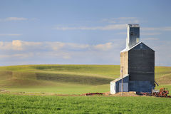 Old Grain Elevator. In middle of green field in spring in the Palouse area of Washington State Royalty Free Stock Images